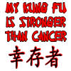 My Kung Fu Is Stronger Than Cancer